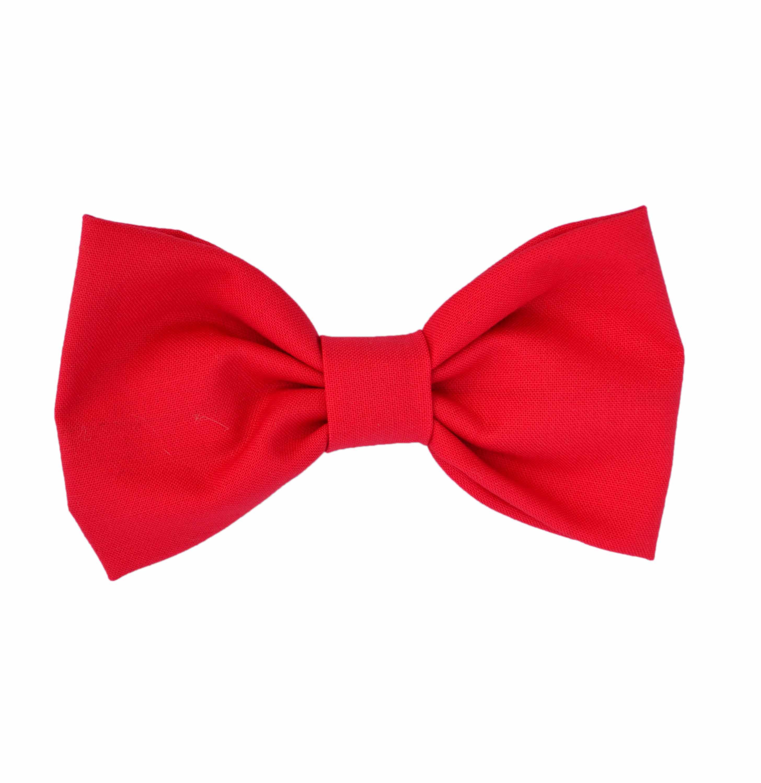 bow tie photo - 1