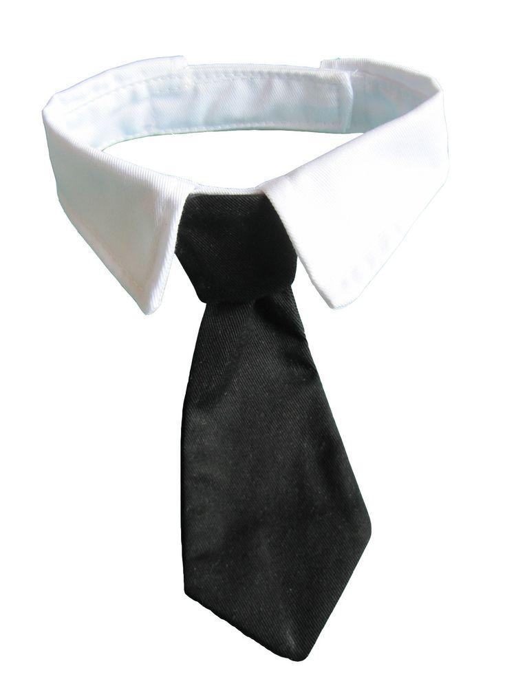 bow tie cat collar photo - 1