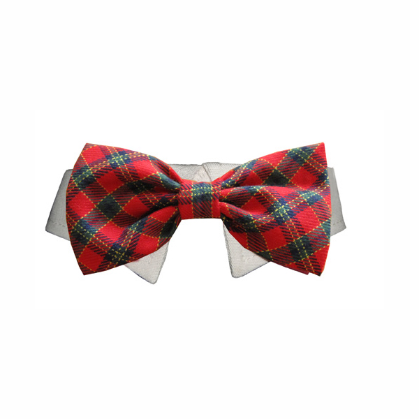 dog christmas bow tie photo - 1