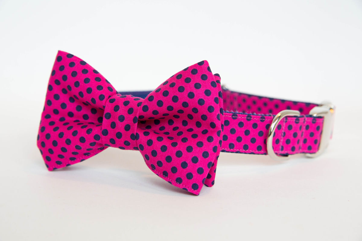 dog collars with bow tie photo - 1