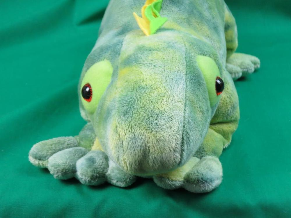 tie dye iguana photo - 1