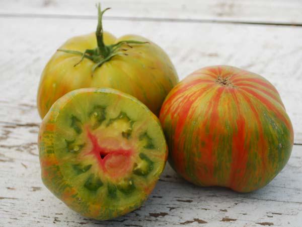 tie dye tomato photo - 1