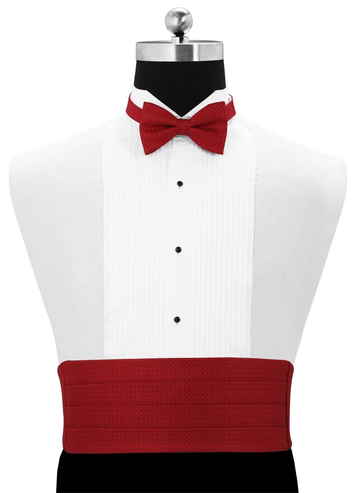vest and bow tie photo - 1