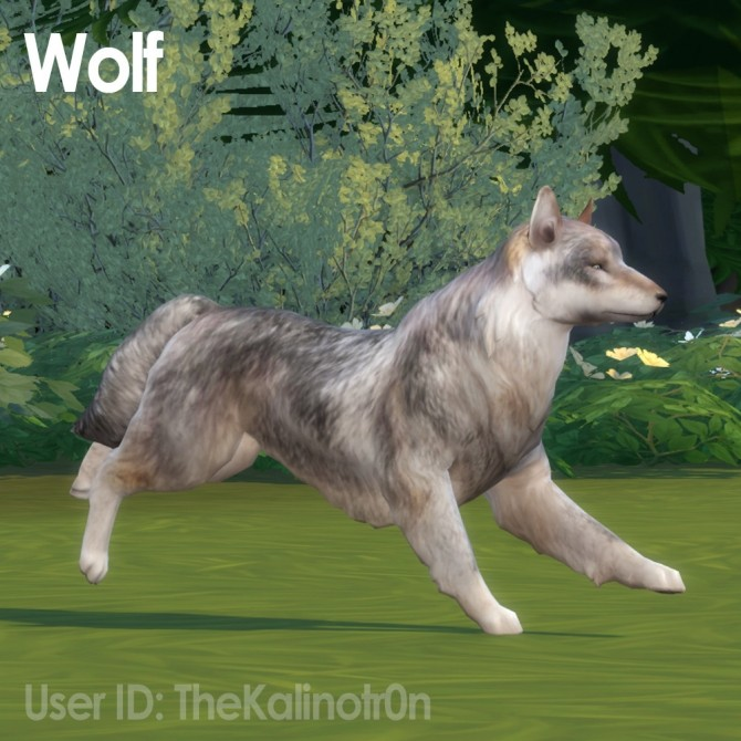 wolf shirt from the office photo - 1