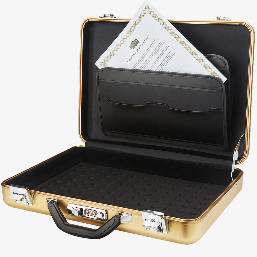 wwe money inthe bank briefcase photo - 1