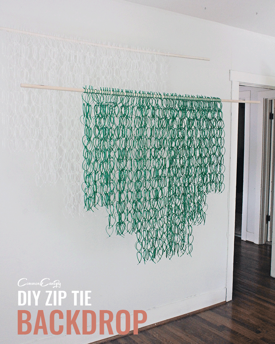 zip tie party photo - 1