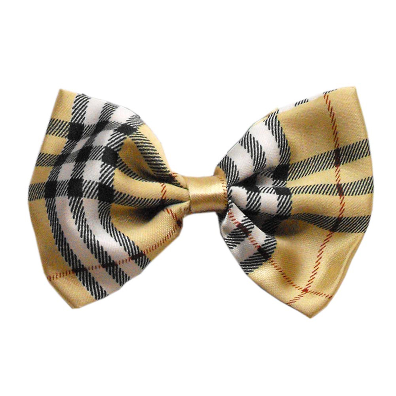 bow tie for dogs photo - 1